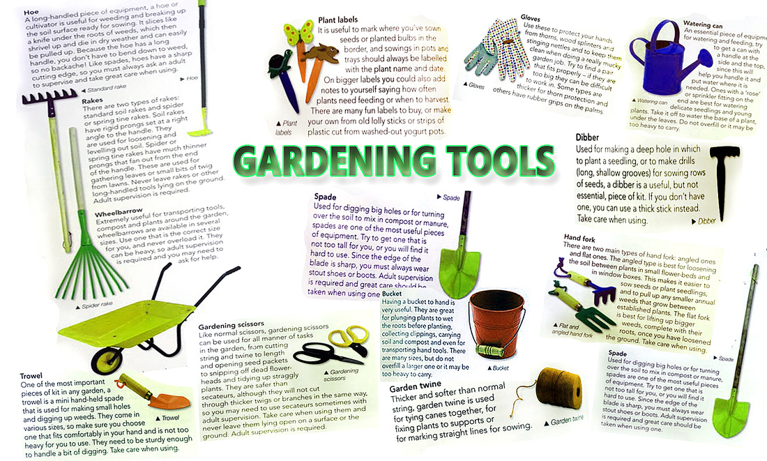 Gardening and environment school sustainability action for Gardening tools for schools